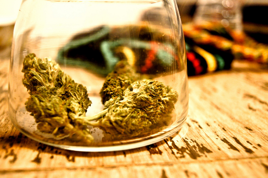 Brief: Recreational Marijuana In Washington State Doing Better Than Expected