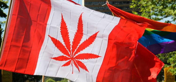 Canada's First Publicly Traded Recreational Marijuana Firm Targets U.S. Markets