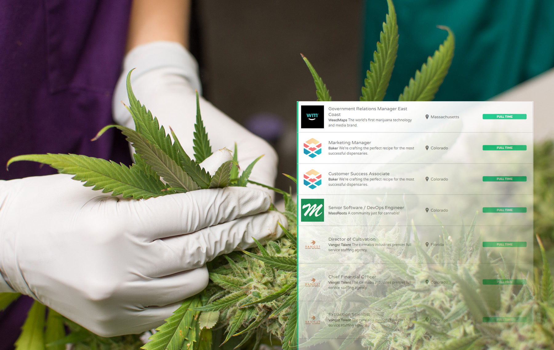 Ganjapreneur Acquires Cannabis Industry Job Board | Ganjapreneur
